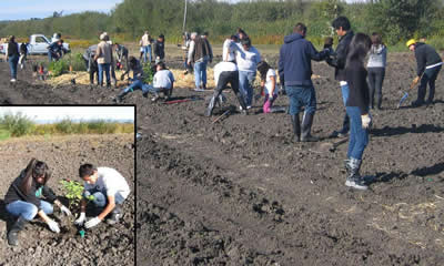 High School Students do Restoration Planting