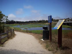 City of Watsonville Trail scene with educational placard and slough in background