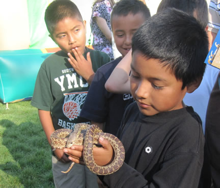 Making friends through WWW wetlands education